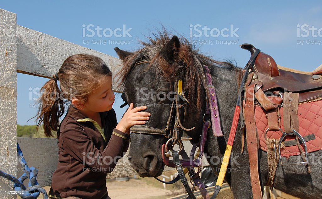 Little girl caring for her pony royalty-free stock photo