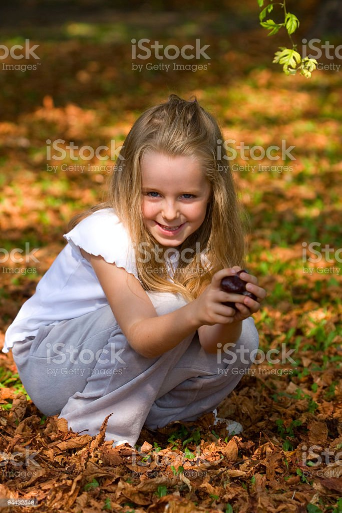 Little girl collect chestnut royalty-free stock photo