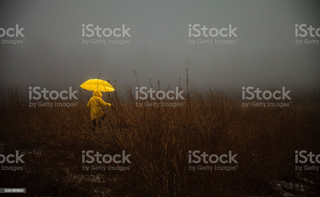 Little girl crossing the field in fog stock photo