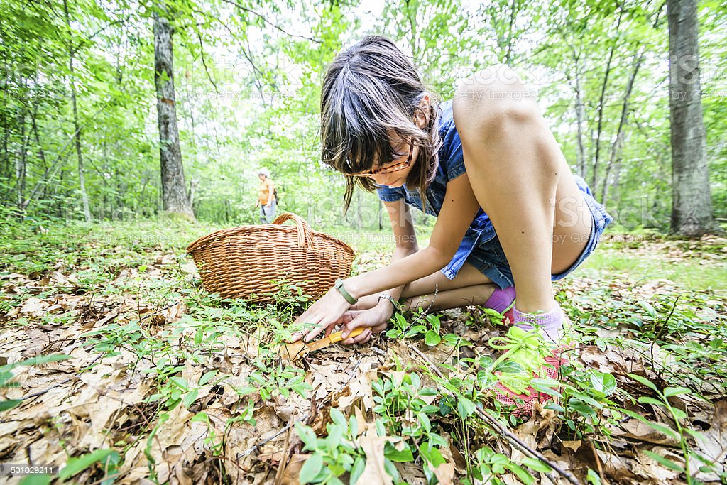 Little girl cuts off the mushroom stock photo
