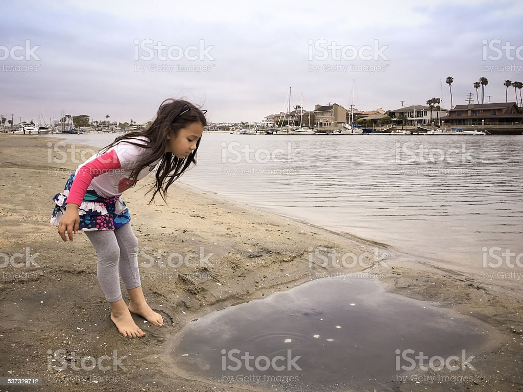 Little girl exploring tide pool on the beach stock photo