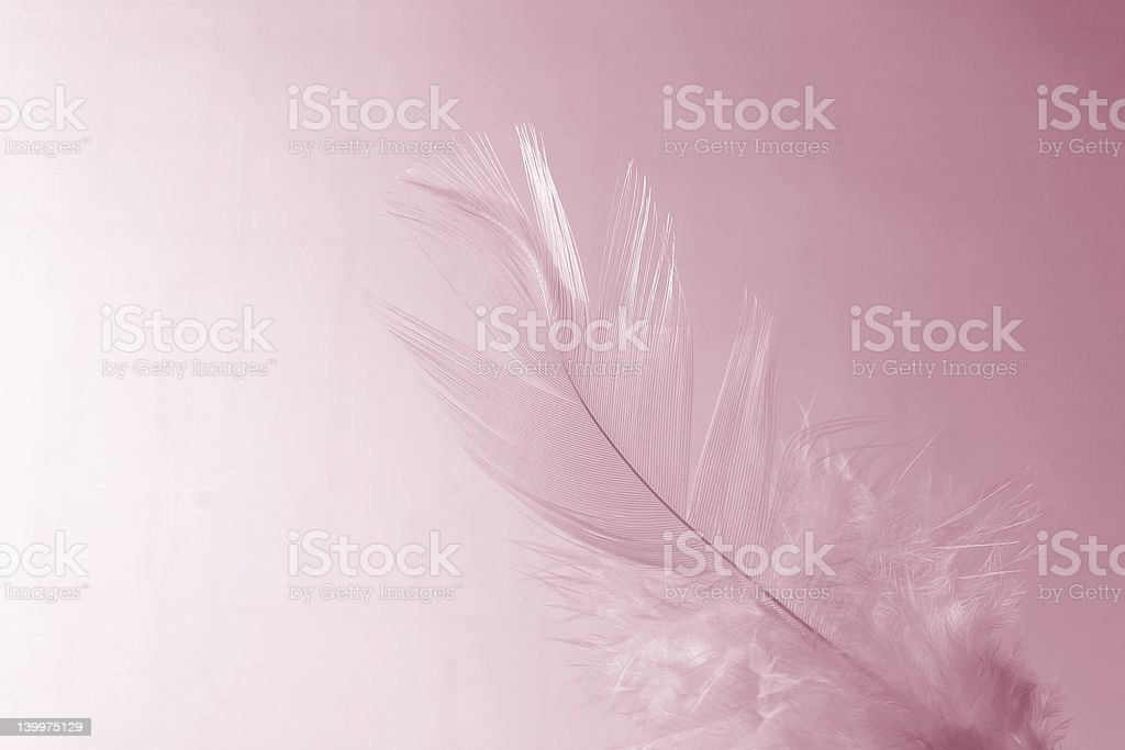 Little girl feather royalty-free stock photo