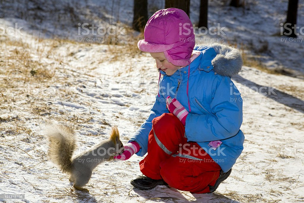 Little girl feeding a squirrel in the winter forest. royalty-free stock photo
