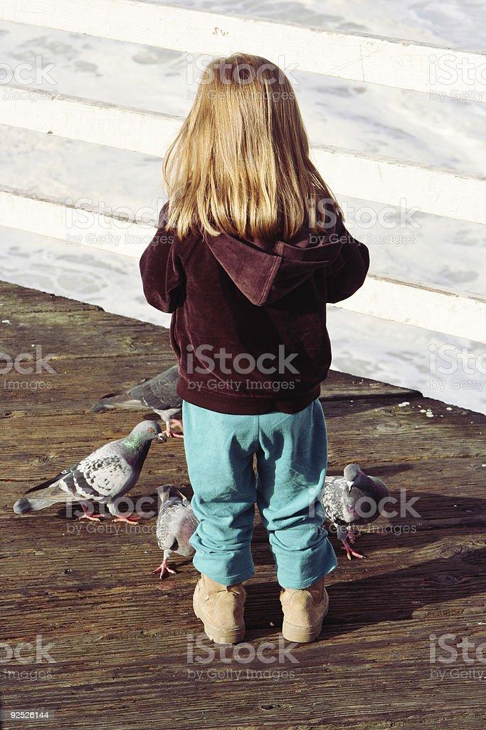 Little Girl Feeding Pigeons royalty-free stock photo
