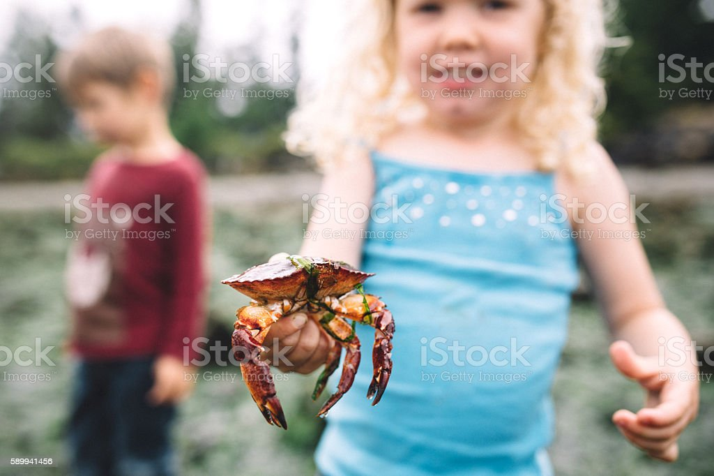 Little Girl Holding a Crab stock photo