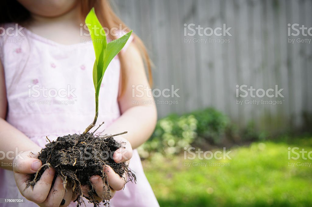 Little Girl Holding a Plant royalty-free stock photo