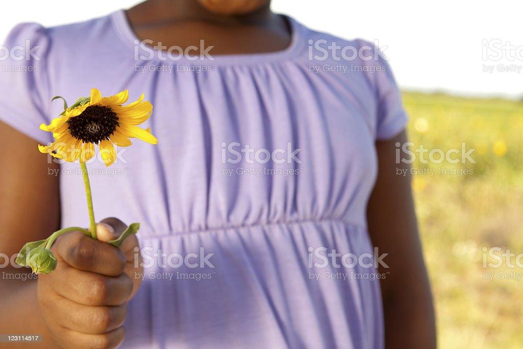 Little Girl Holding Flower royalty-free stock photo