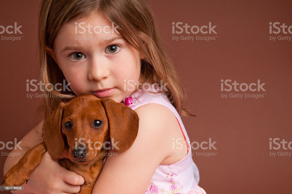 Little Girl Hugging Purebred Miniature Dachshund royalty-free stock photo