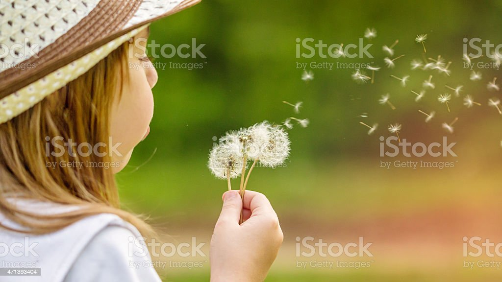 Little girl in a hat blowing dandelions outdoors stock photo