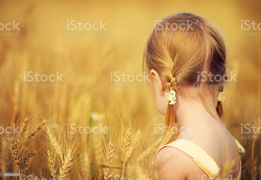 Little girl in a wheat field close up stock photo