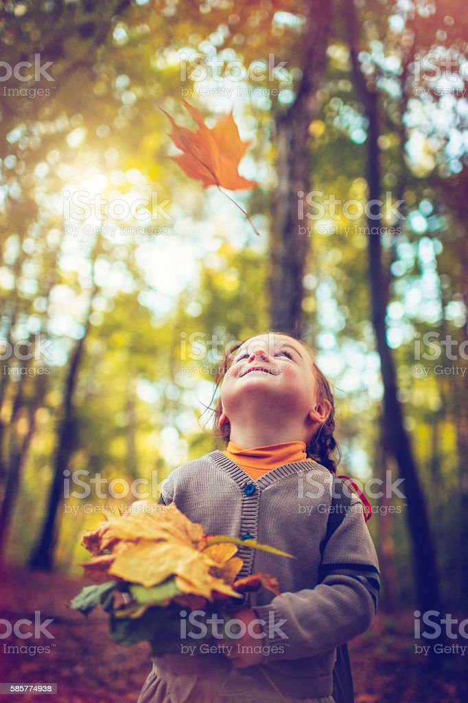 Little girl in autumn park stock photo