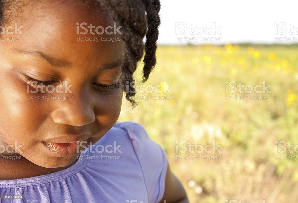 Little Girl In Field of Flowers royalty-free stock photo
