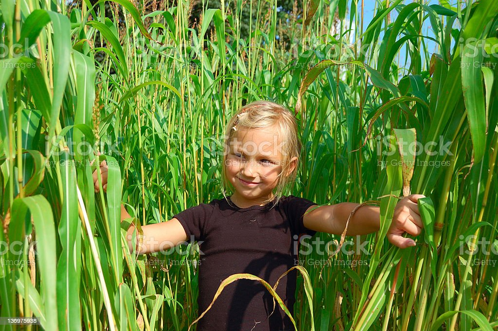 Little girl in grass royalty-free stock photo