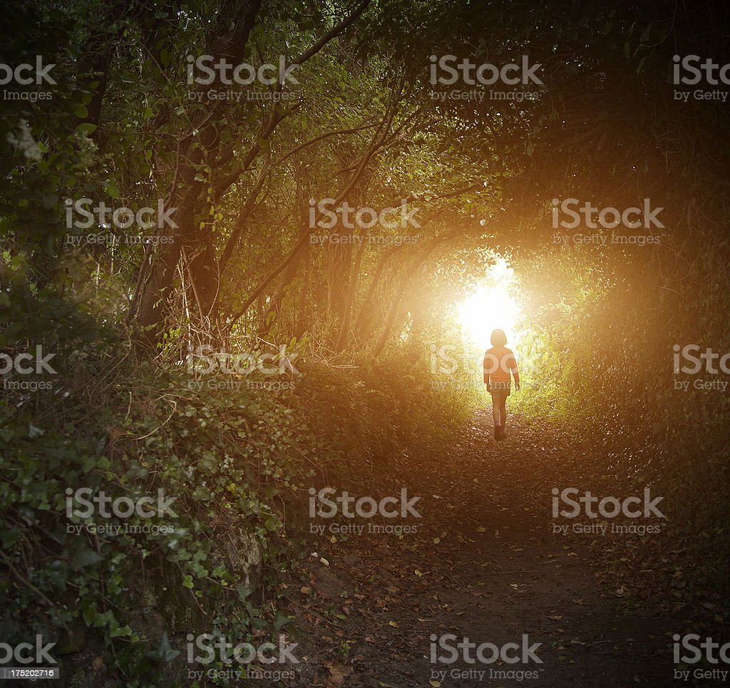 Little girl in magical forest stock photo