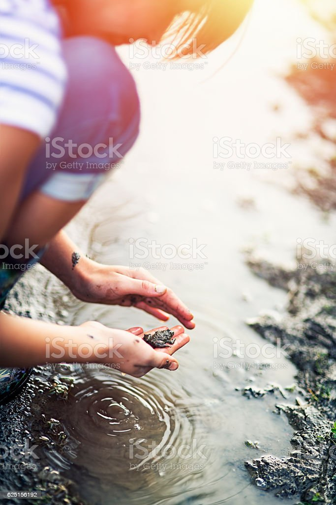 Little girl in playing with frog in a muddy puddle stock photo