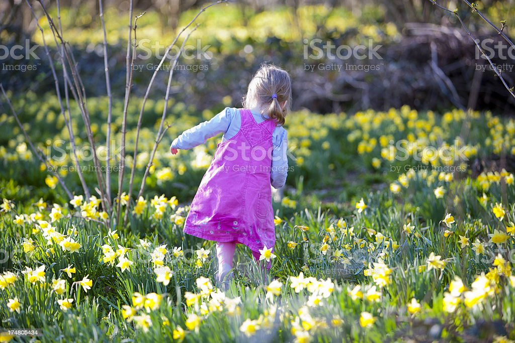 Little girl in spring flowers royalty-free stock photo