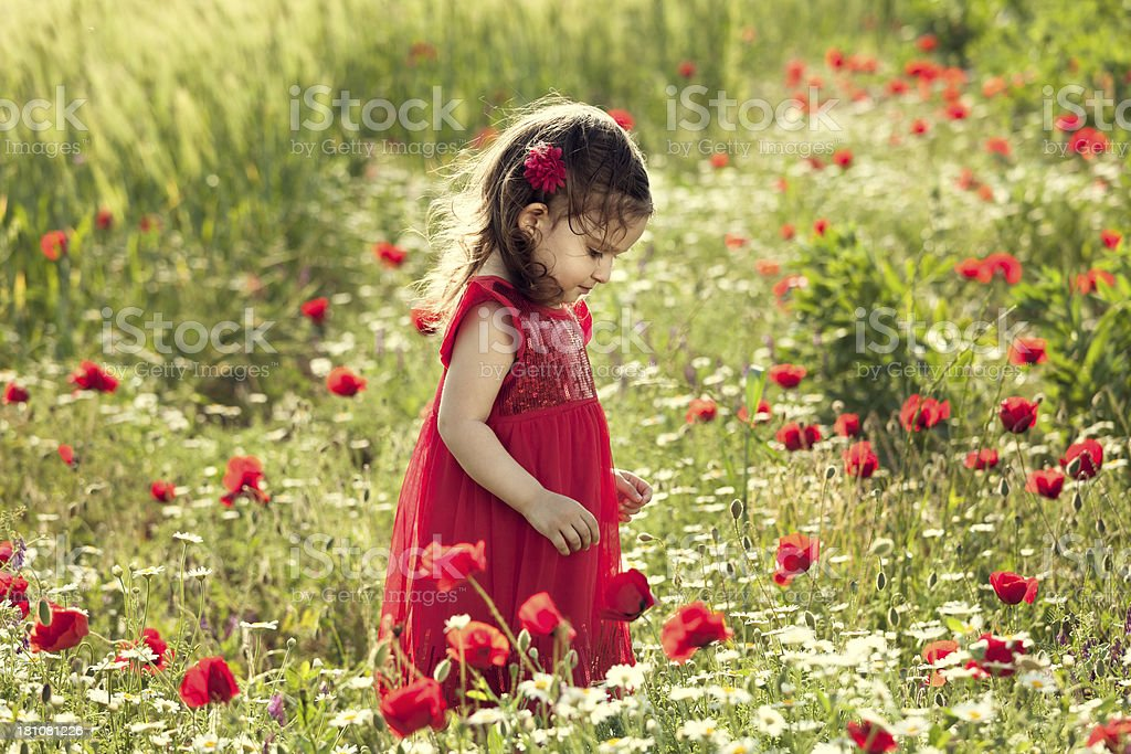 Little girl in the garden flower royalty-free stock photo