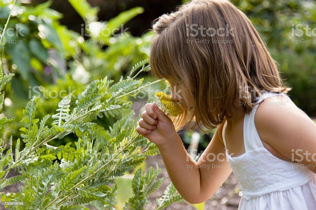 Little Girl in the Garden stock photo