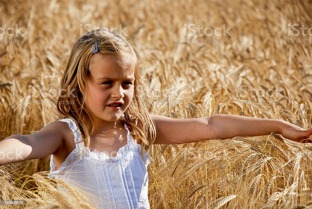 Little girl in wheat royalty-free stock photo
