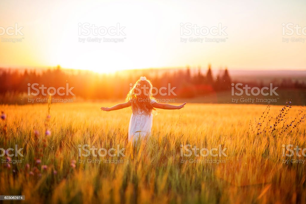Little girl in white dress in field at sunset stock photo