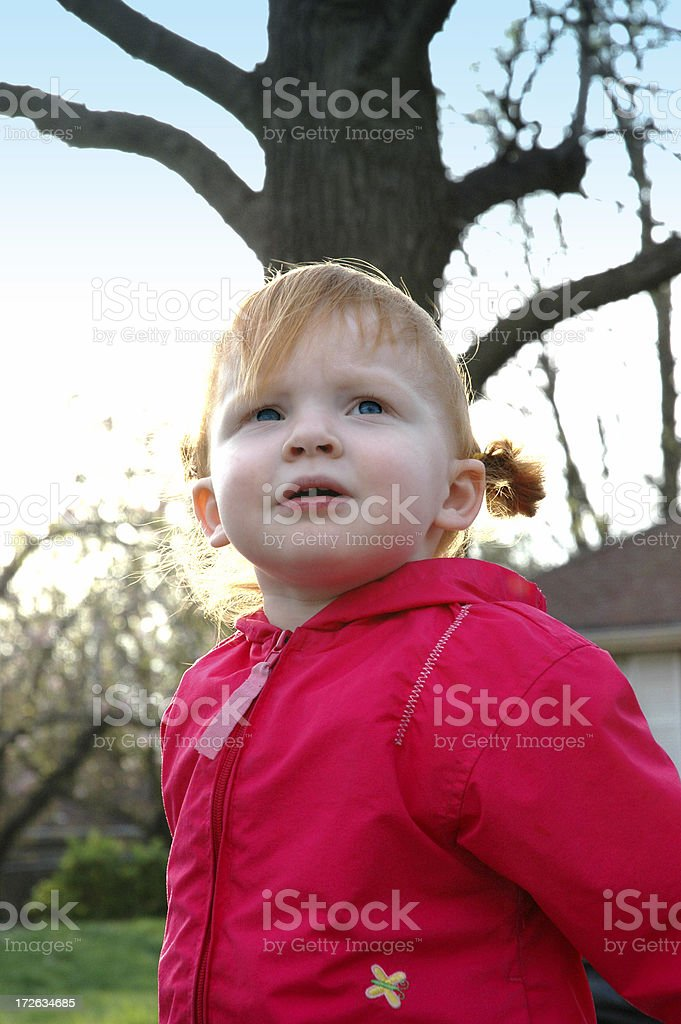 Little Girl in Wonder stock photo