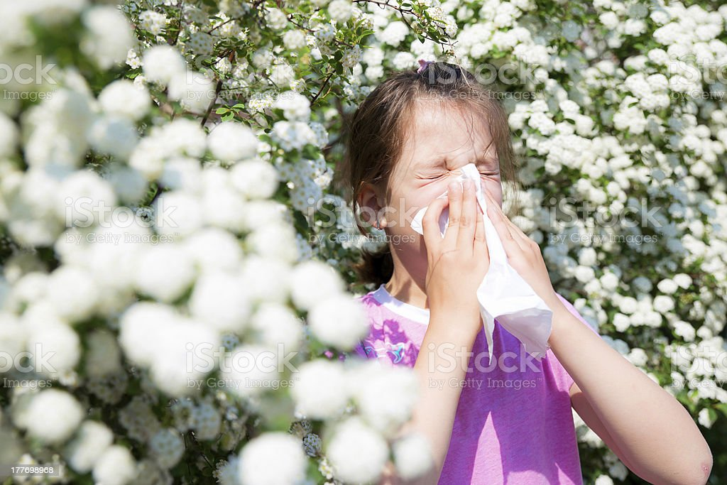 Little girl is blowing her nose royalty-free stock photo
