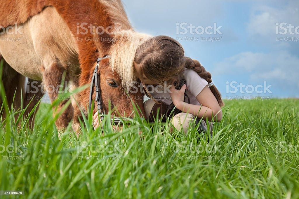 little girl kisses her pony stock photo