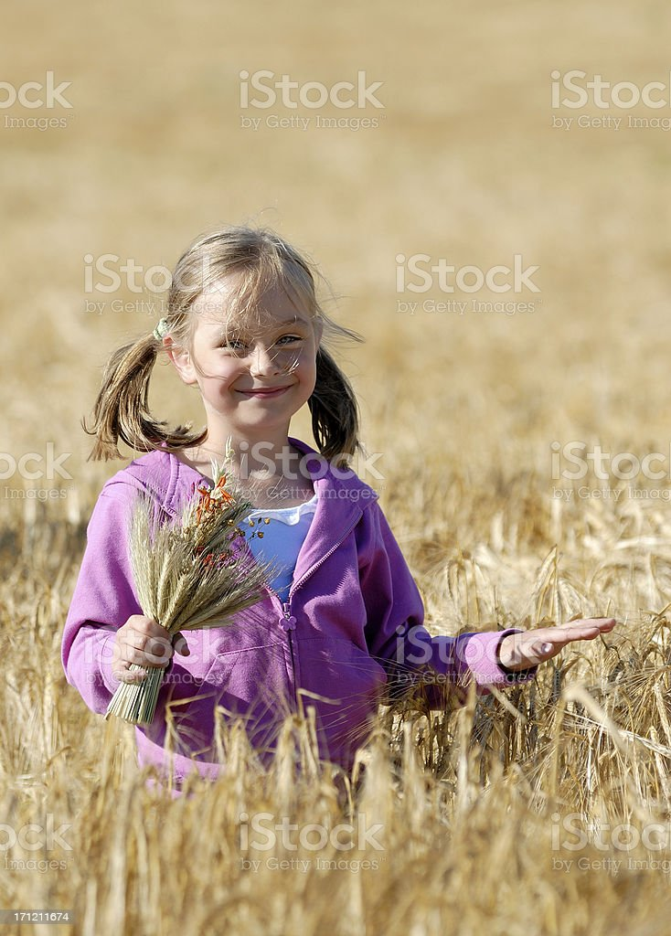 Little girl on meadow royalty-free stock photo