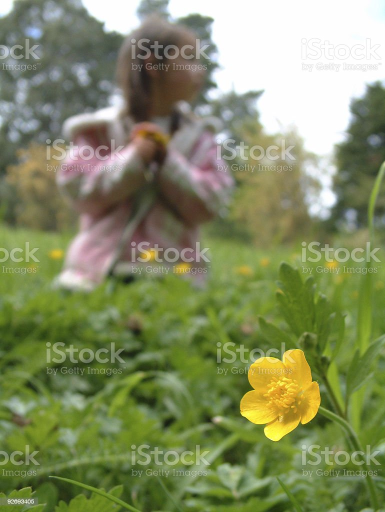 Little Girl Picking Buttercups 2 royalty-free stock photo