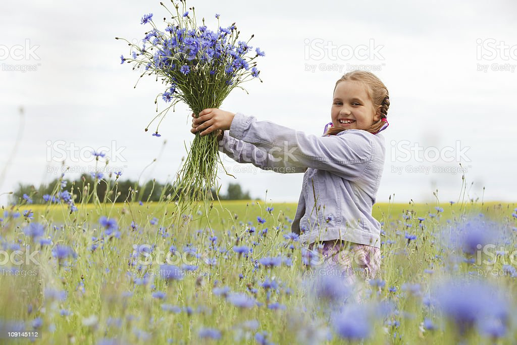 Little girl picking flowers royalty-free stock photo