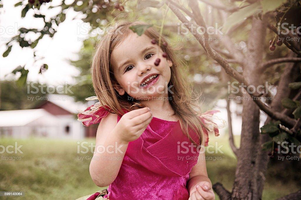 Little Girl picking wild cherries stock photo