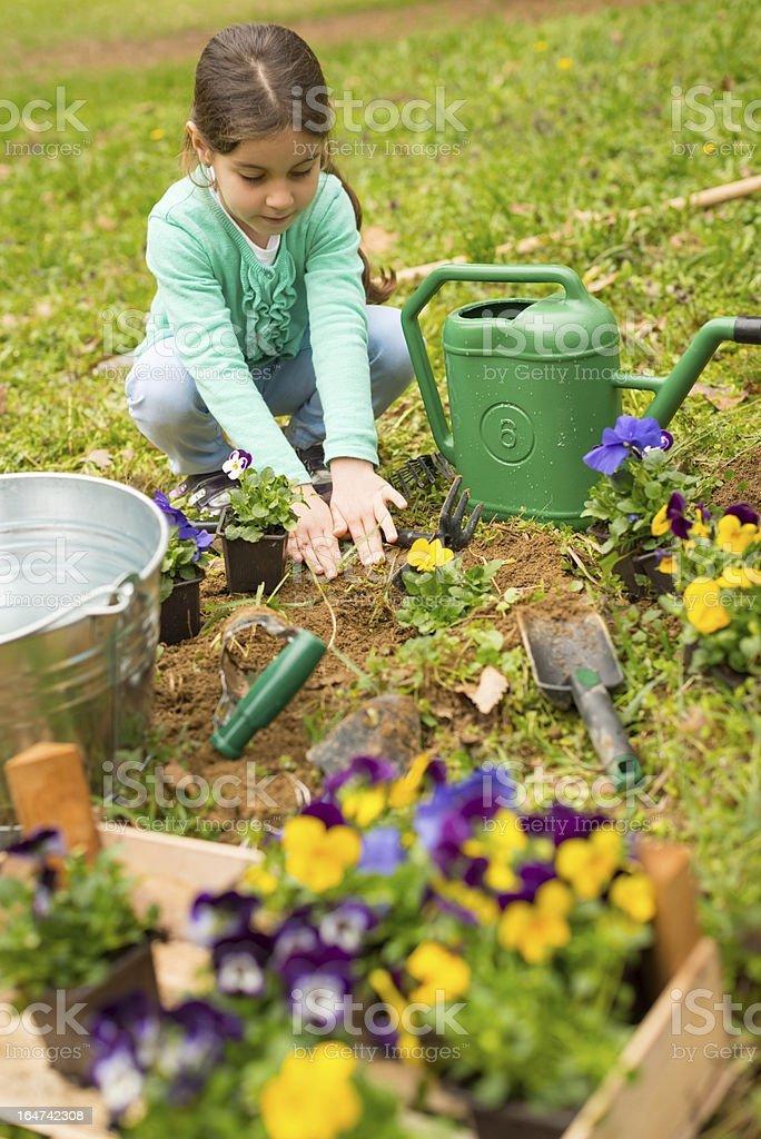 Little girl planting flowers stock photo