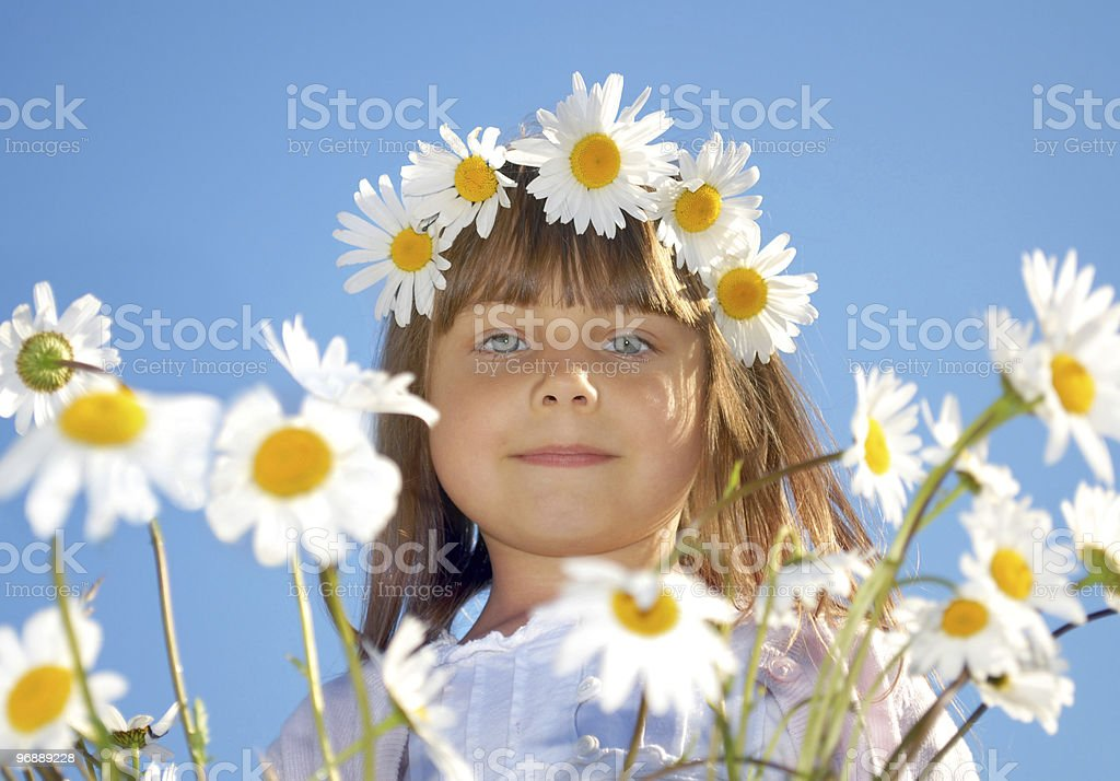 little girl playing in marguerite field stock photo