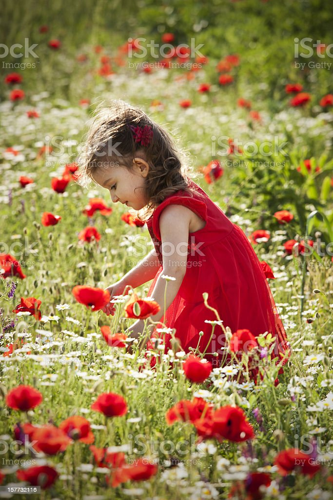 Little girl playing in the garden flower royalty-free stock photo