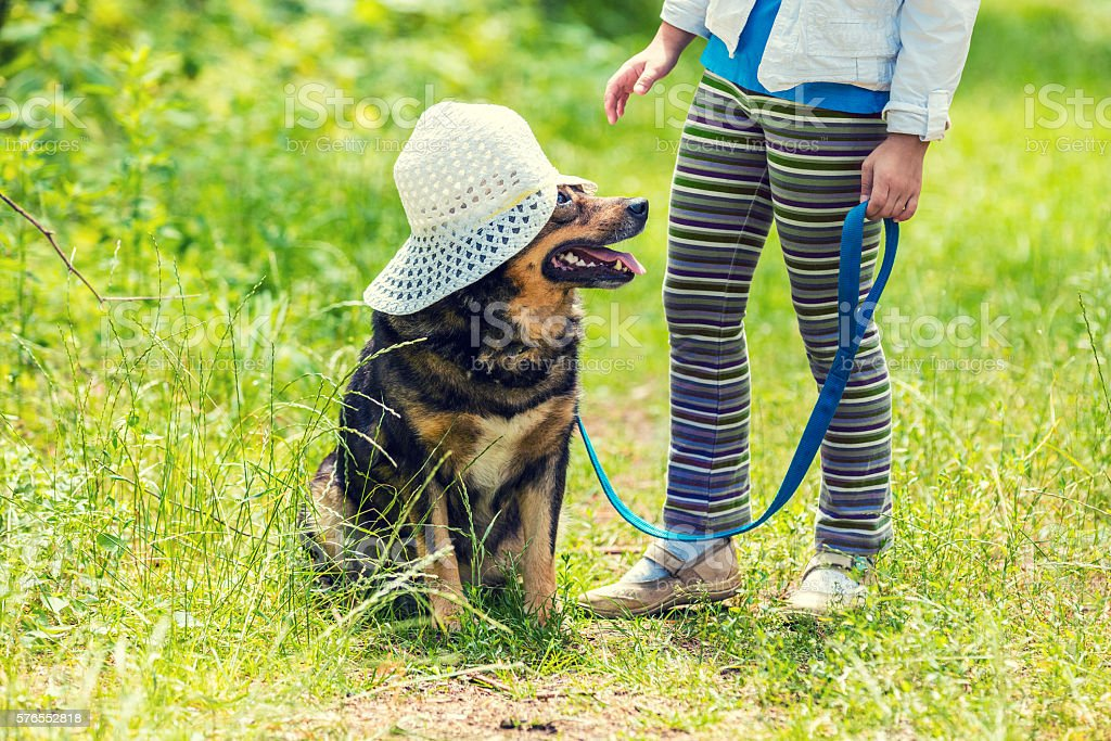 Little girl playing with dog on the grass stock photo