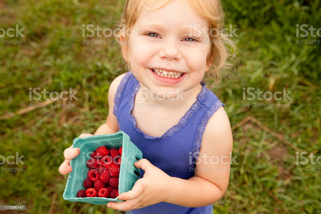 Little Girl Proudly Holding Carton of Raspberries She Picked royalty-free stock photo