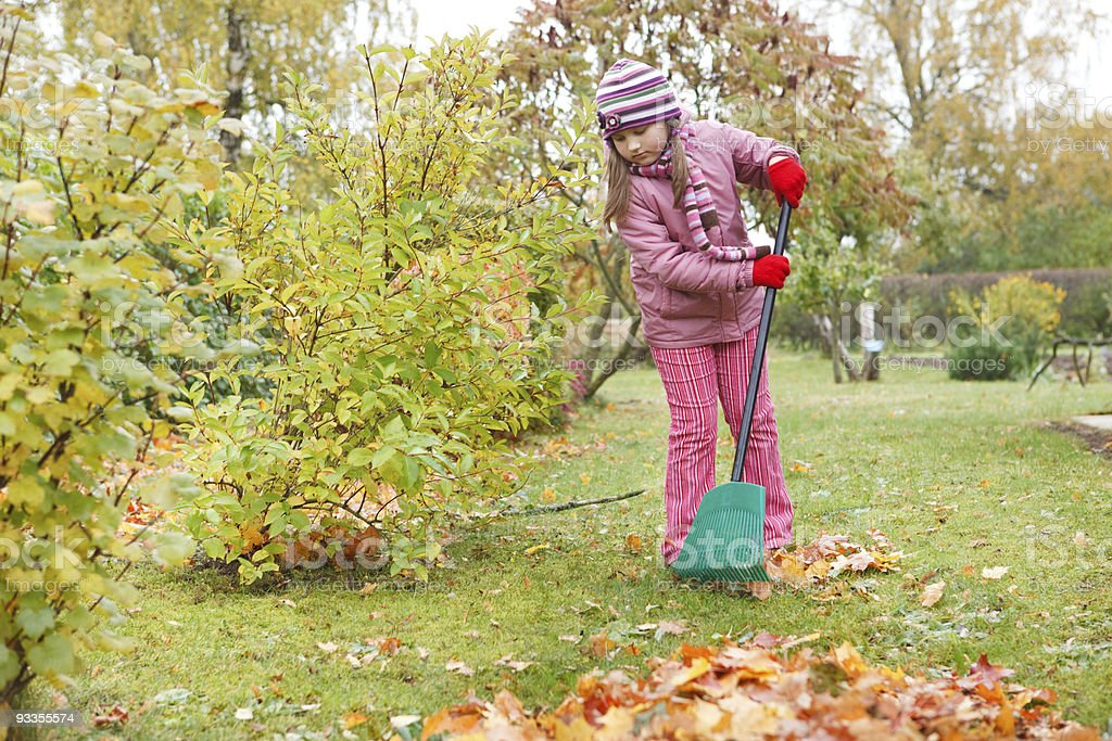 Little girl rake autumn leaves in garden royalty-free stock photo