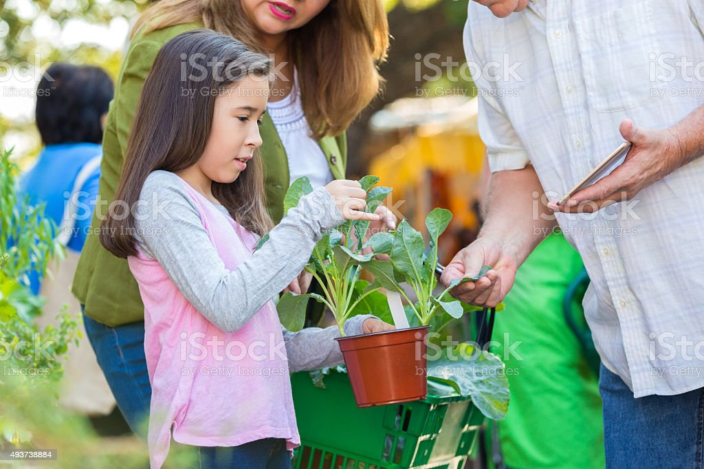 Little girl shopping for plants with mother at gardening store stock photo