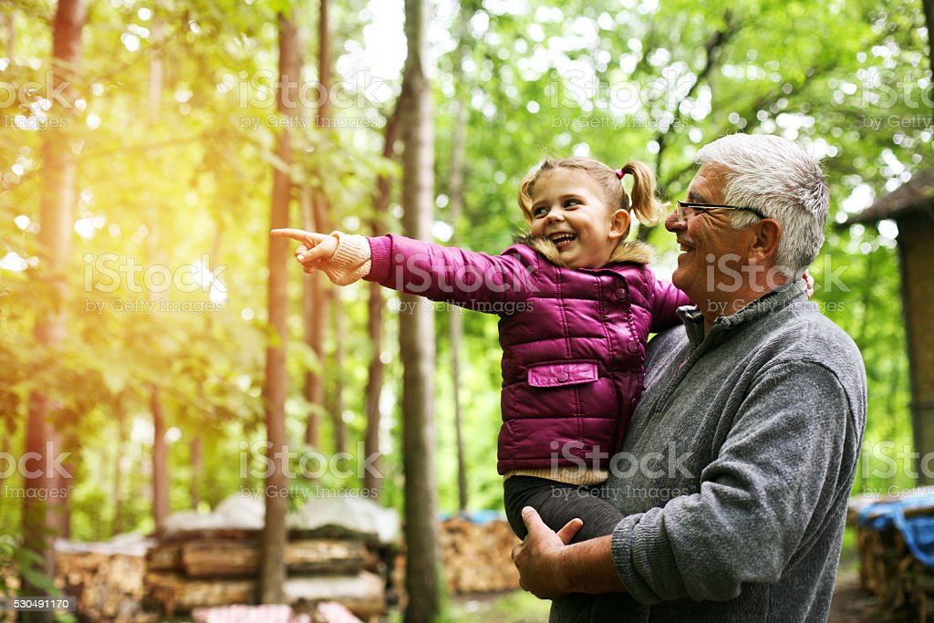 Little girl showing her grandfather something in forest. stock photo