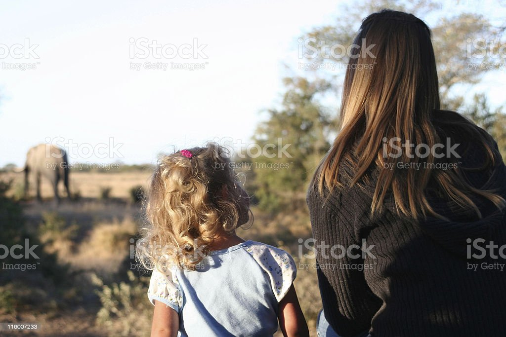 A little girl sitting next to a woman looking at elephants stock photo