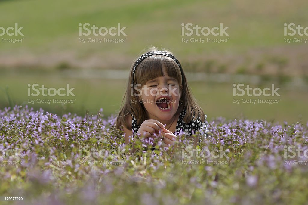 Little Girl Sneezing In a Field of Wild Flowers royalty-free stock photo