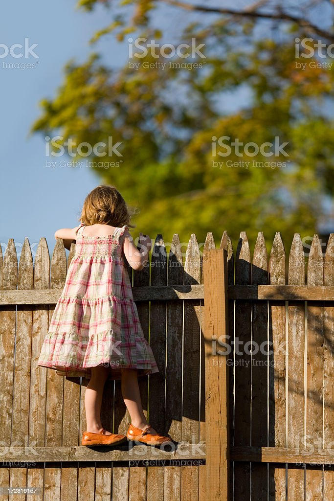 Little girl standing on fence looking over royalty-free stock photo