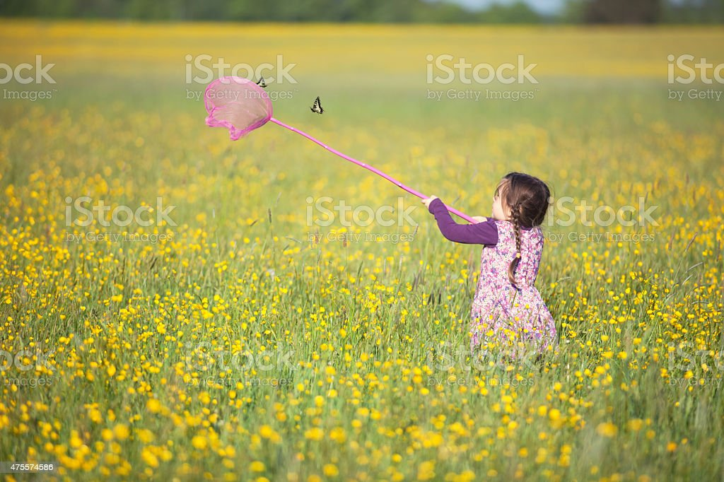 Little girl trying to catch a butterfly with a net stock photo