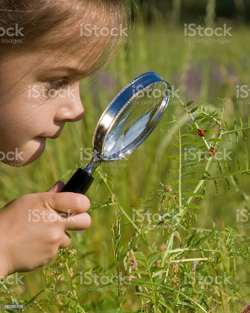A little girl using a magnifying glass outside stock photo