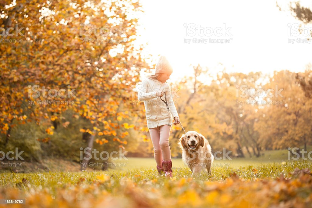 Little girl walking in the park with her dog stock photo