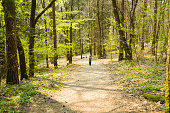 Little girl walking on a path in forest