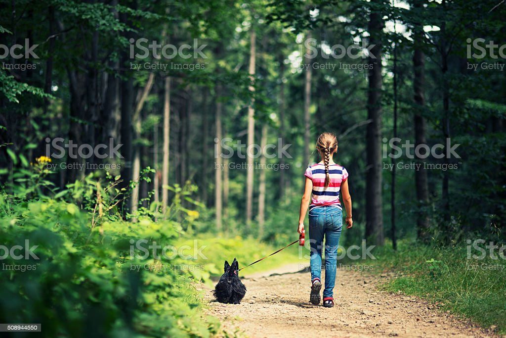 Little girl walking with dog in a forest stock photo