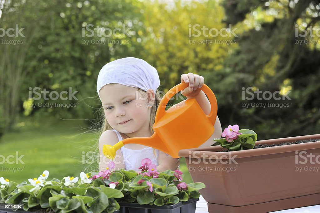 Little girl watering flowers royalty-free stock photo