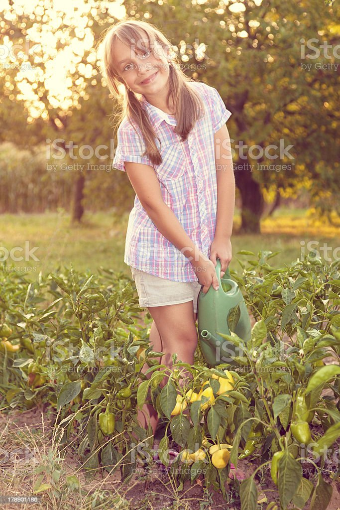 Little girl watering plants royalty-free stock photo