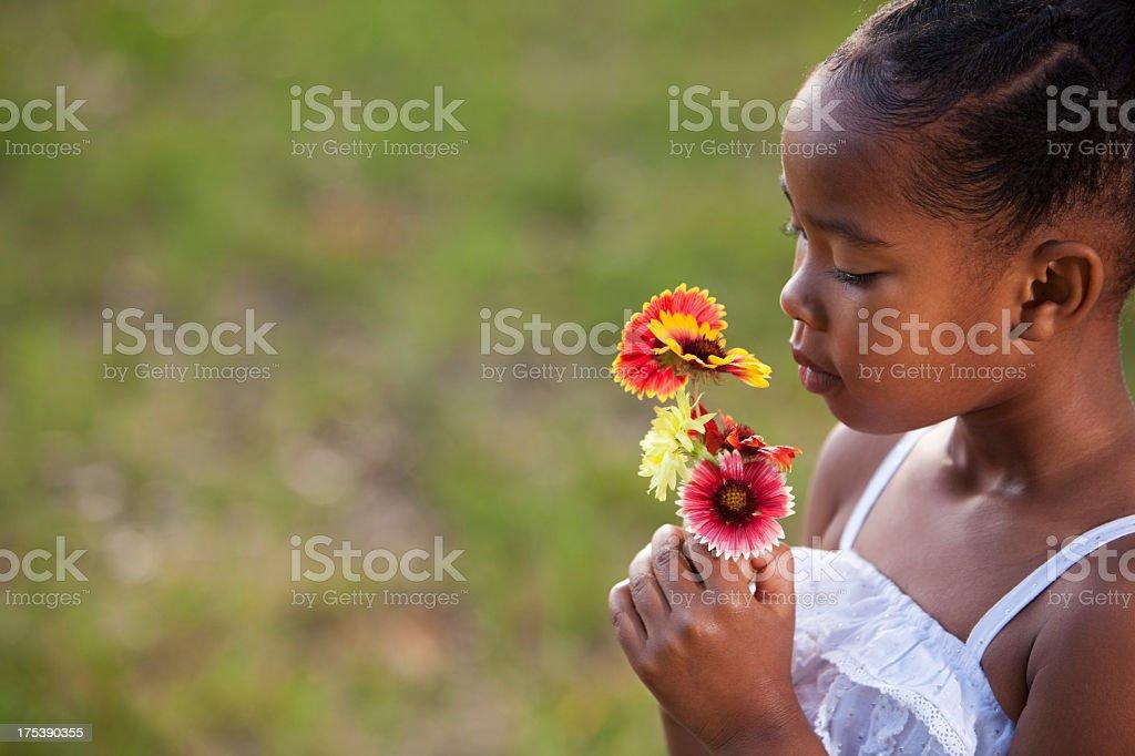Little girl wearing sundress holding flowers stock photo